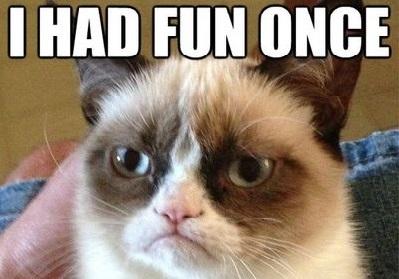 grumpy-cat-funny-meme-i-had-fun-once-2