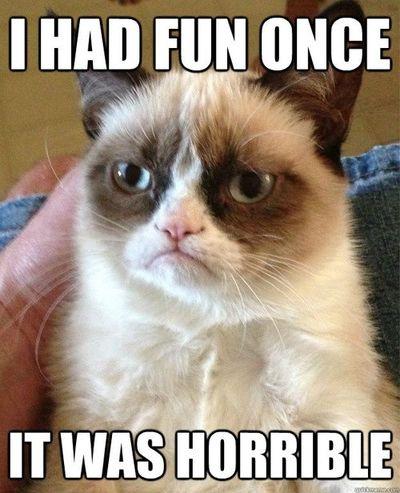 grumpy-cat-funny-meme-i-had-fun-once