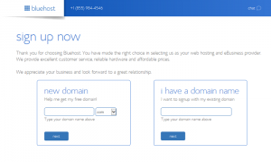 bluehost-choose-domain-for-your-blog